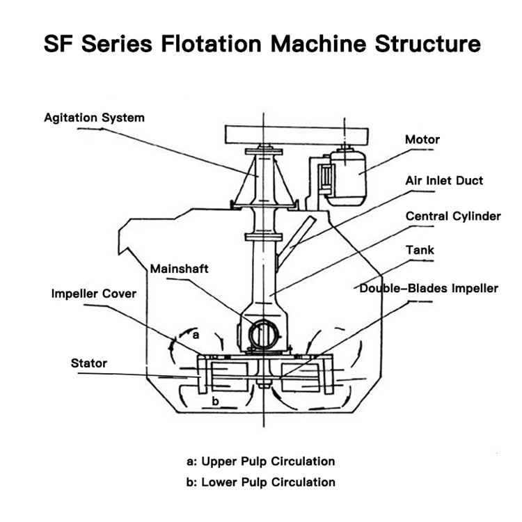 structure of SF flotation cell